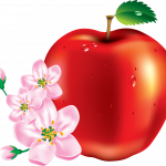 Download and use Apple In PNG
