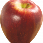 Download this high resolution Apple In PNG