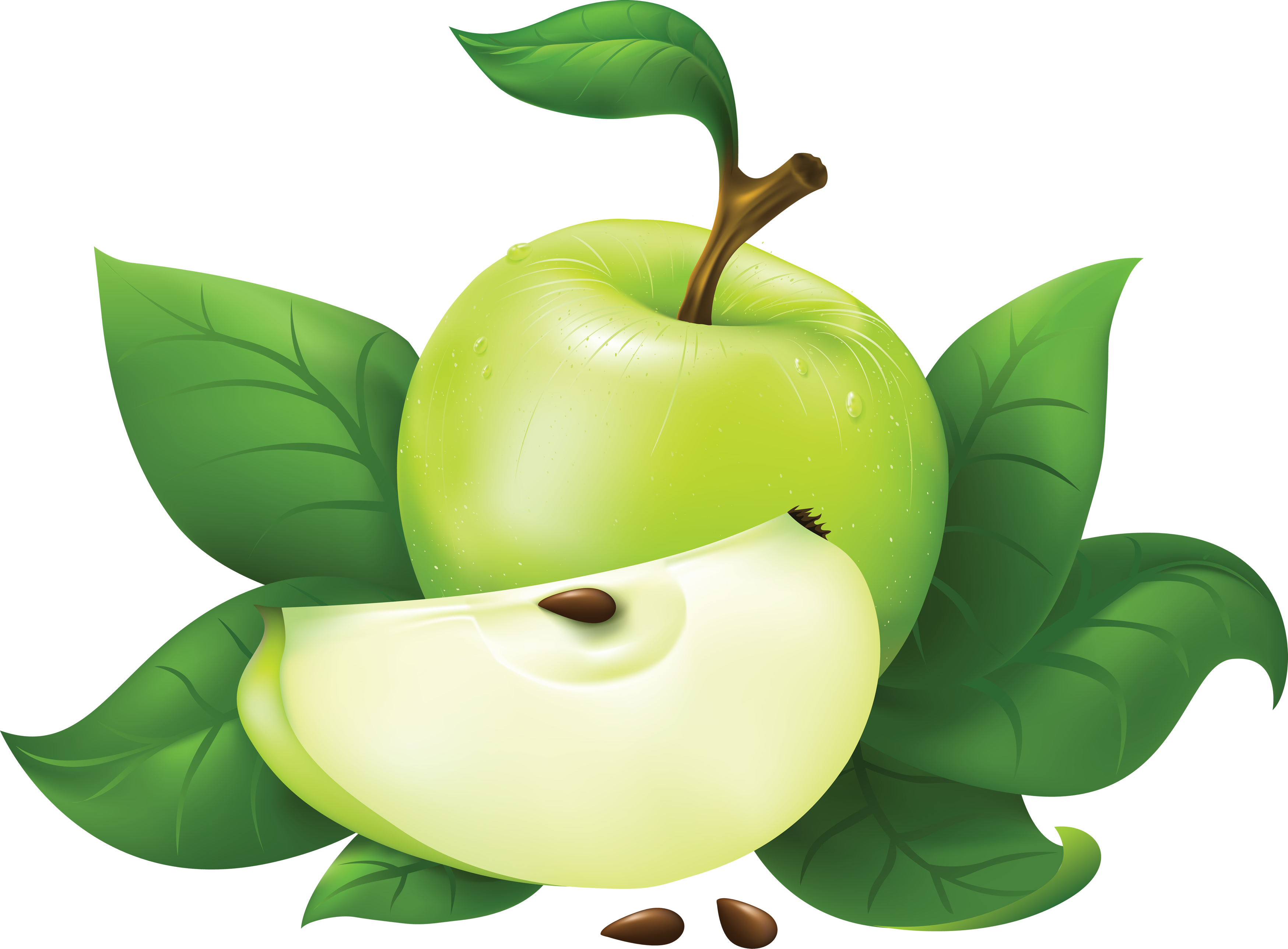 Now you can download Apple PNG Picture