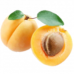 Free download of Apricot PNG Picture