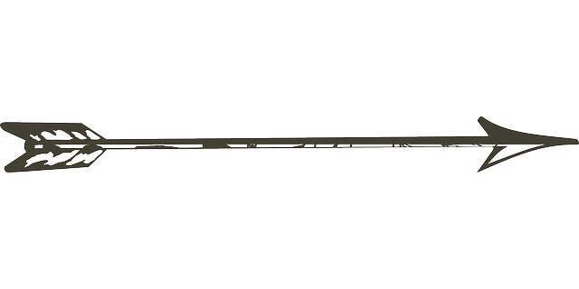Free download of Arrow Bow PNG