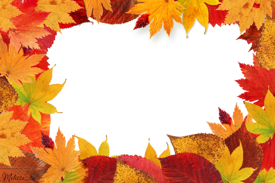 Autumn Leaves PNG Image   Web Icons PNG