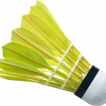 Download for free Badminton  PNG Clipart