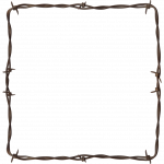 Free download of Barbwire PNG Image