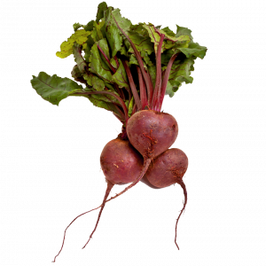 Download for free Beet PNG Image