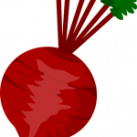 Download and use Beet Icon Clipart