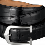 Download this high resolution Belt In PNG