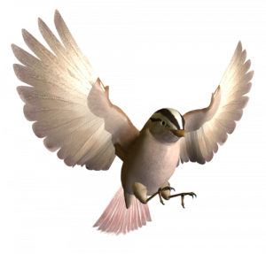 Download and use Birds PNG Image