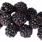 Download and use Blackberry High Quality PNG