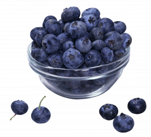 Grab and download Blueberries Icon