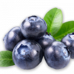 Grab and download Blueberries  PNG Clipart