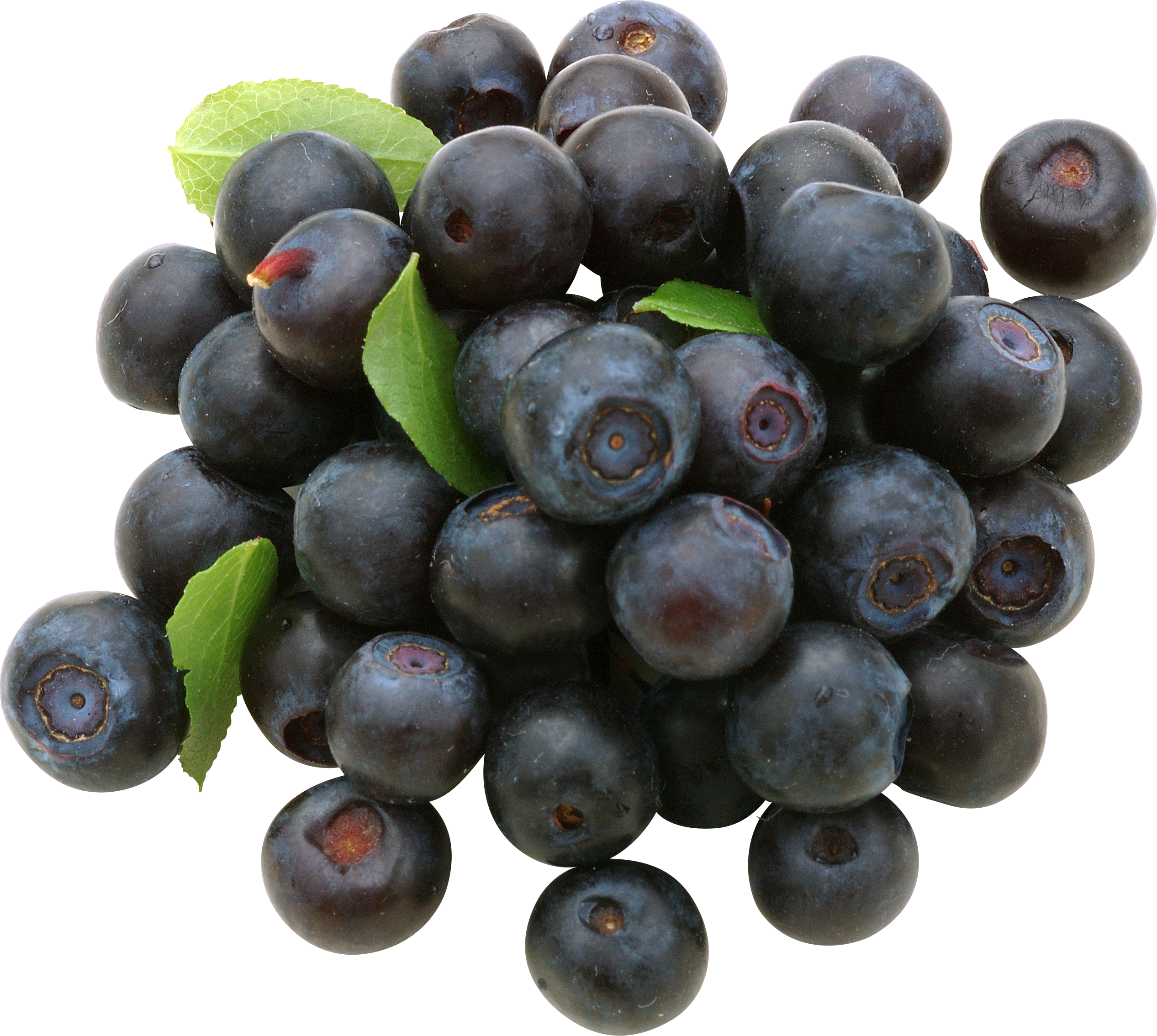 Download for free Blueberries Icon PNG