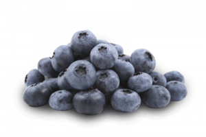 Download for free Blueberries PNG Picture