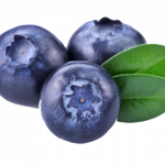 Download and use Blueberries Icon PNG