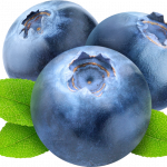 Grab and download Blueberries Transparent PNG File