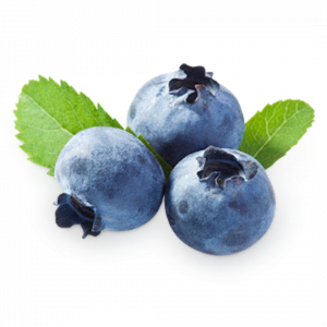 Grab and download Blueberries PNG Picture