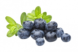 Grab and download Blueberries PNG