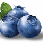 Free download of Blueberries PNG Picture