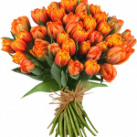 Free download of Bouquet Of Flowers PNG Image