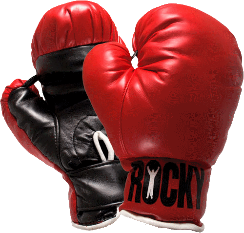 Free download of Boxing Gloves In PNG