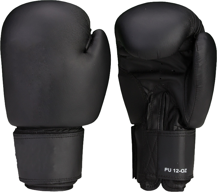 Download this high resolution Boxing Gloves PNG Picture