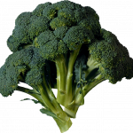 Now you can download Broccoli PNG Picture