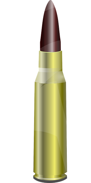 Download this high resolution Bullets PNG Image