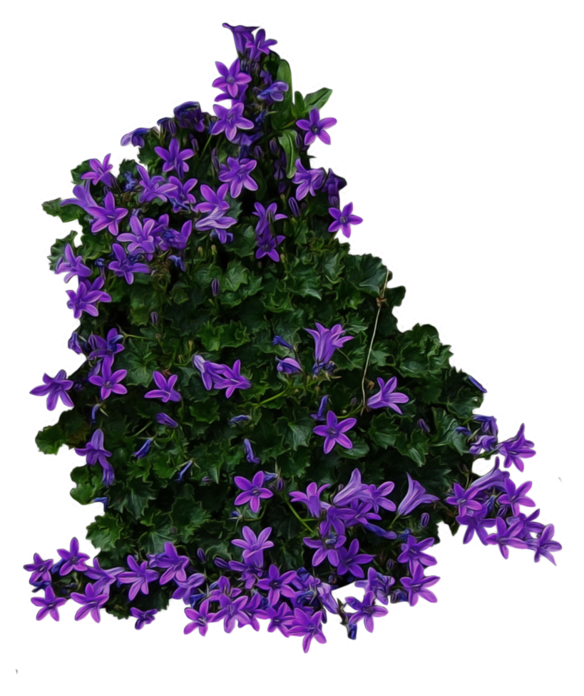 Free download of Bushes PNG Icon