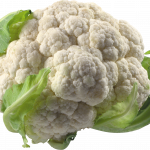 Best free Cabbage Icon Clipart