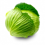 Now you can download Cabbage PNG Picture