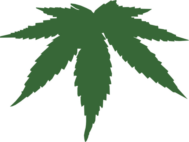 Grab and download Cannabis In PNG