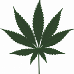 Download this high resolution Cannabis In PNG