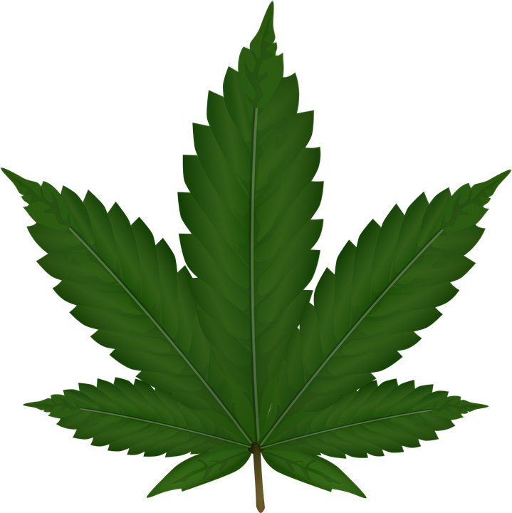 Download this high resolution Cannabis Icon Clipart