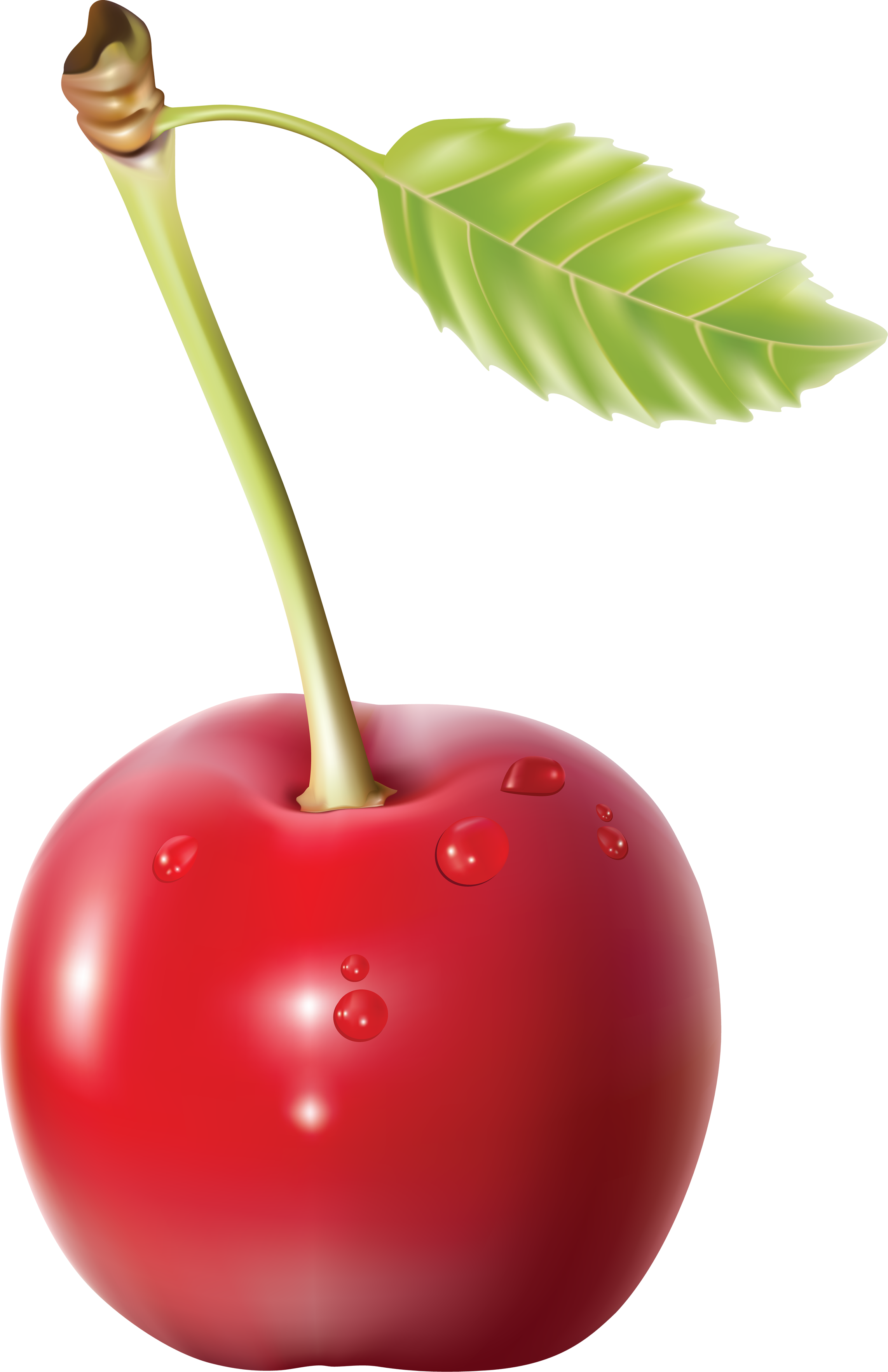 Grab and download Cherry Transparent PNG File