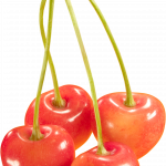 Download for free Cherry PNG Image Without Background
