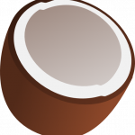 Grab and download Coconut Transparent PNG Image