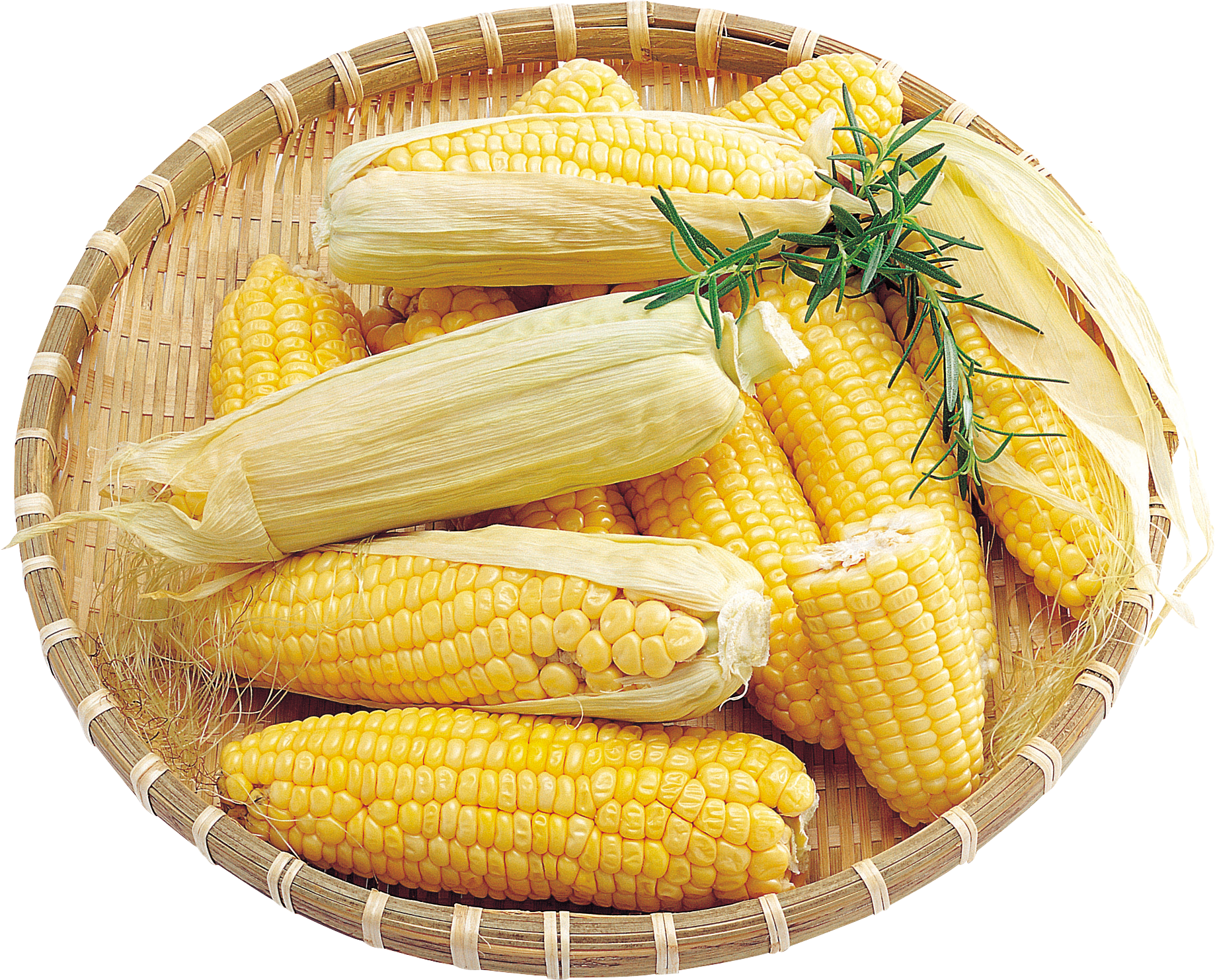 Grab and download Corn PNG Image Without Background