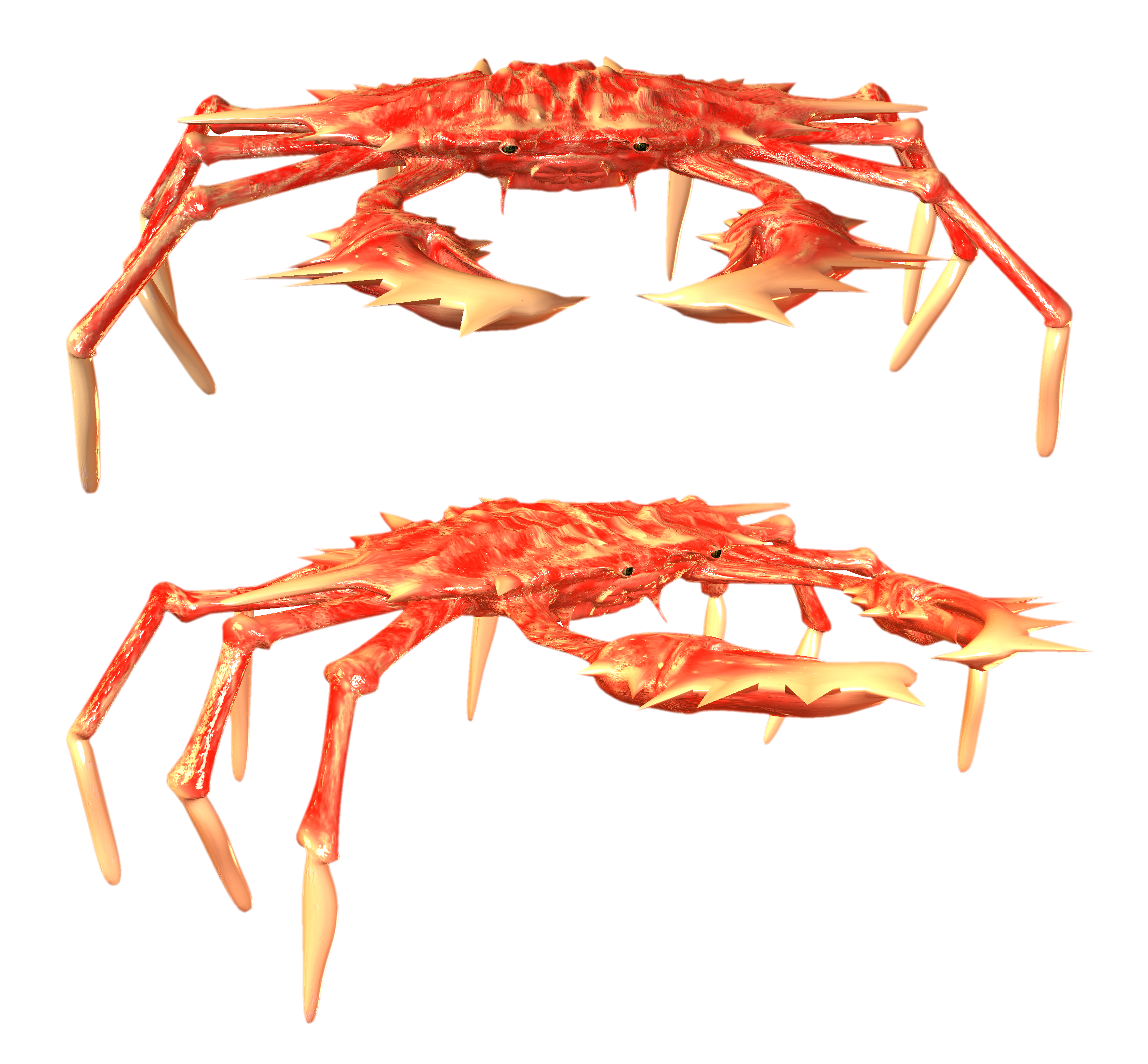 Best free Crab PNG Picture