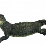 Download for free Crocodile  PNG Clipart