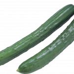 Grab and download Cucumber PNG Image Without Background