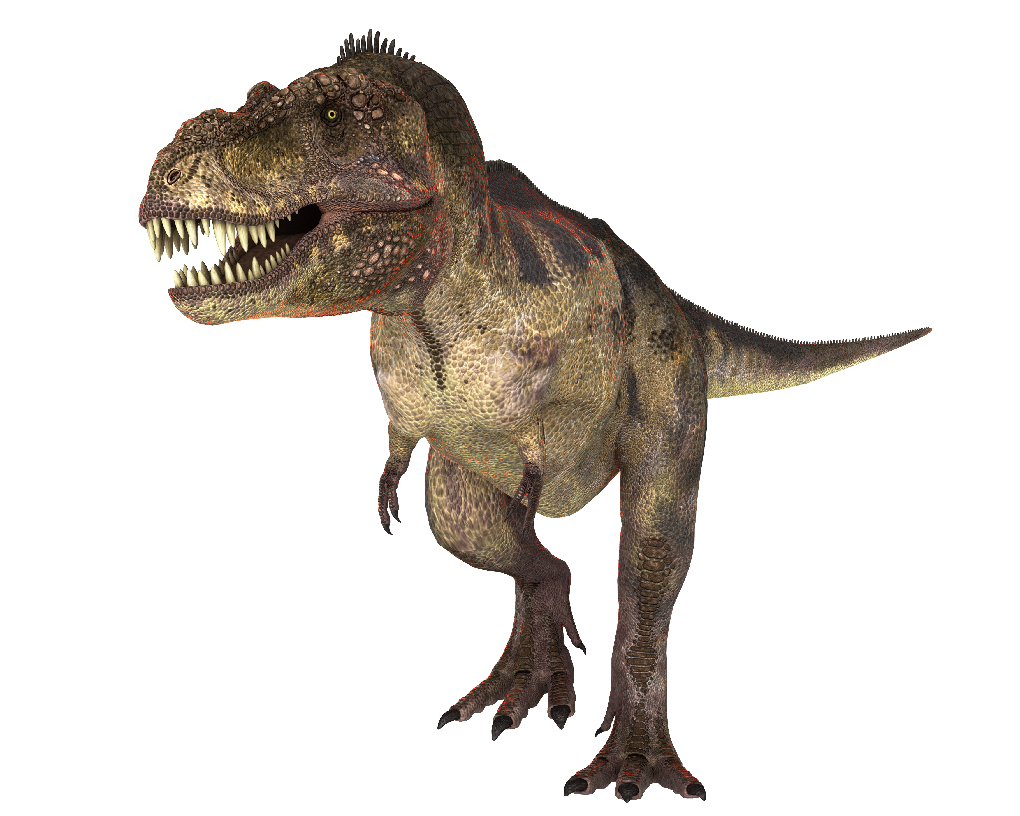 Download this high resolution Dinosaur Icon Clipart