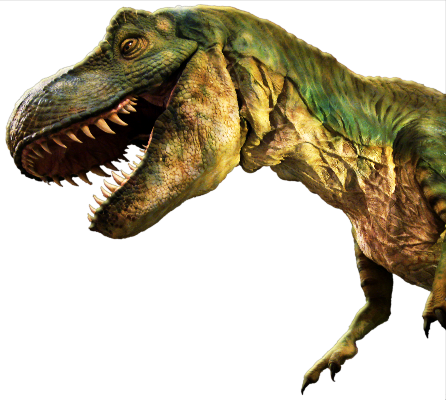 Grab and download Dinosaur High Quality PNG
