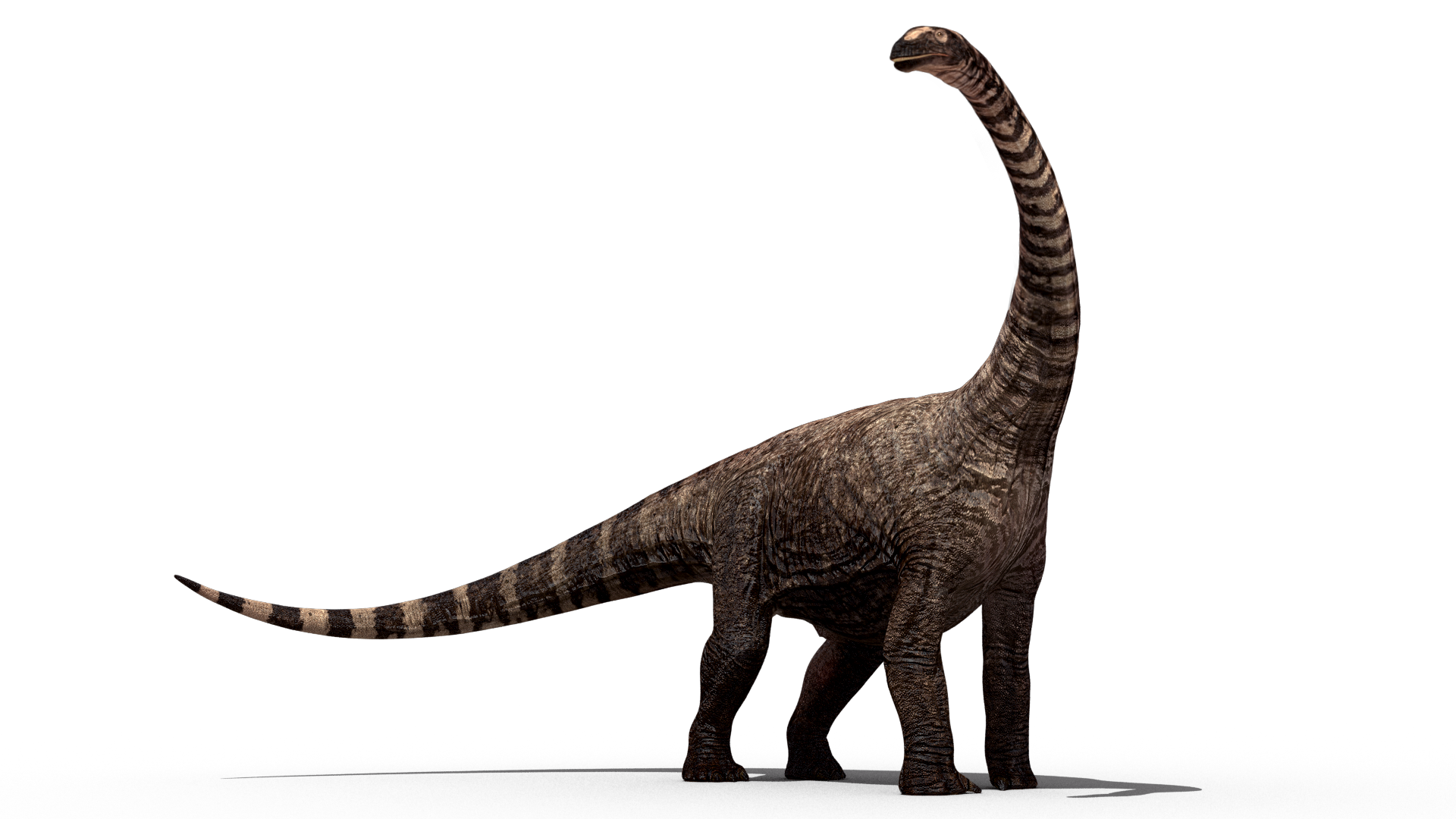 Download this high resolution Dinosaur Transparent PNG Image