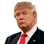 Download and use Donald Trump PNG Picture