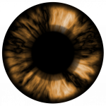 Download this high resolution Eyes PNG Icon