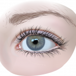 Best free Eyes High Quality PNG