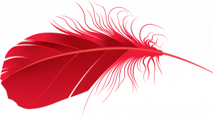 Best free Feather Transparent PNG File