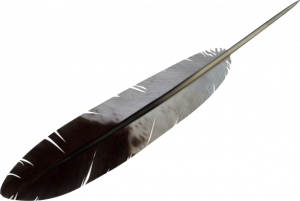 Now you can download Feather PNG Picture