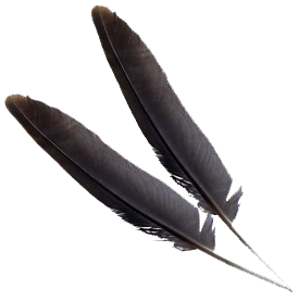 Download this high resolution Feather PNG