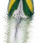 Grab and download Feather Transparent PNG Image